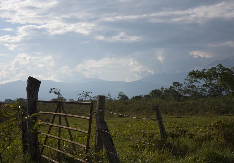 En äng på låglandet i Colombia