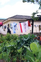 Grönsakslandet vid Rosas hus